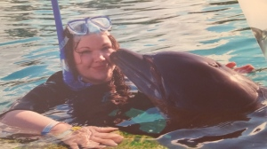 dolphinblog2