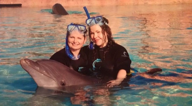 dolphinexperience